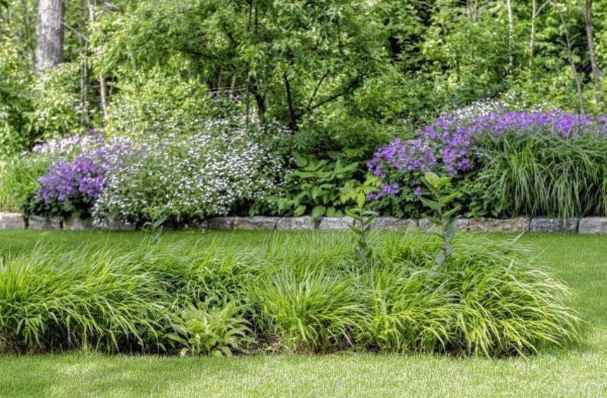 """Der """"New German Style"""": Gartenszenen, die wie zufällig gewachsen und doch unwirklich dicht und ..."""