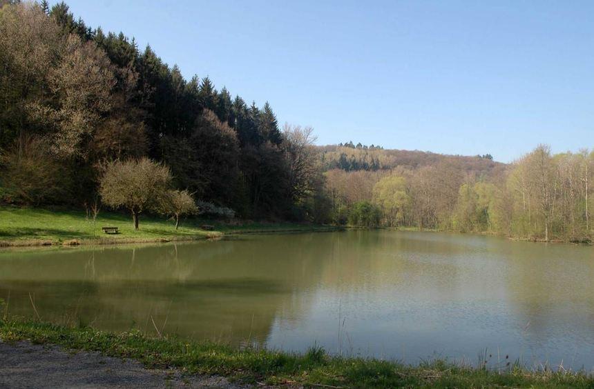 Idyllisch liegt der Bücholdwiesensee im Erftal zwischen Hardheim und der Wohlfahrtsmühle.